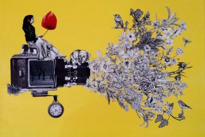 collage of camera shooting out flowers like a press release