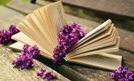 comforting book image, book strewn with lilacs