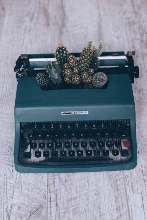 Cactus growing out of typewriter. Want to write more?