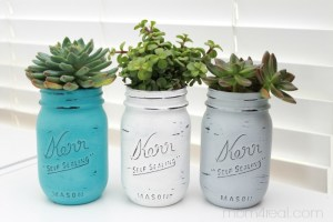 Painted-Mason-Jars-With-Succulents1