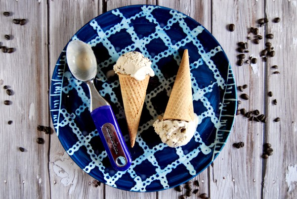 Coconut Chocolate Chip Coffee Ice Cream   the Charming Detroiter