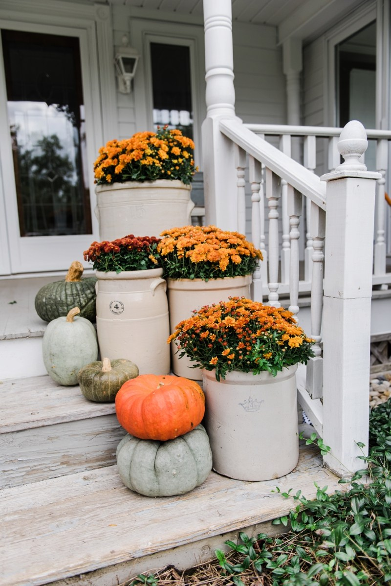On the blog, I'm sharing all my favorite finds for modern farmhouse halloween decor, everything from cute felted pumpkins to the perfect spooky wall art!