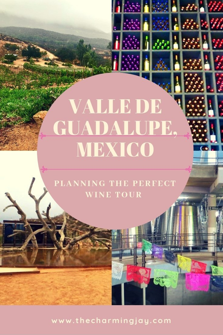 Valle de Guadalupe-Mexican Wine Country