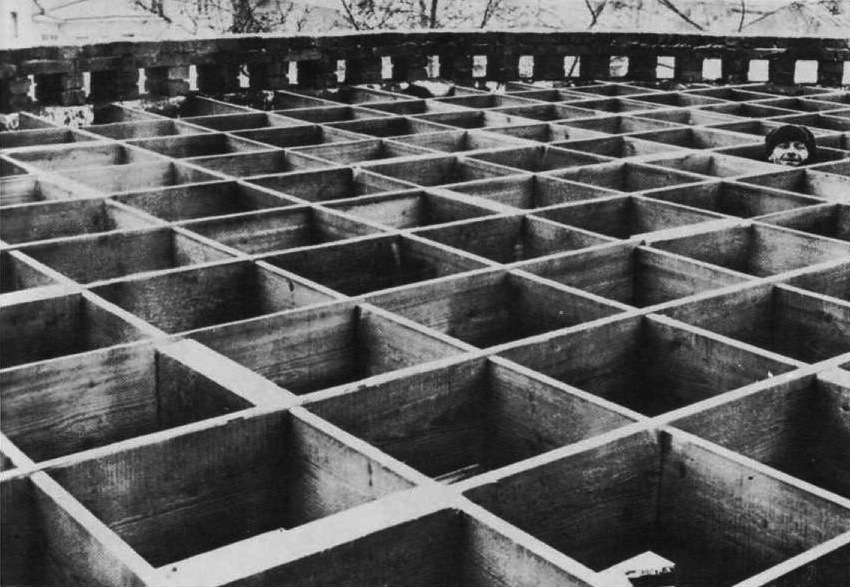 Worker peeking through one of the floor pieces for the Mel'nikov house (1928)