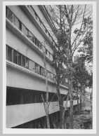 Gruntal, V.G. Partial view of the garden façade of the People's Commissariat for Finance (Narkomfin) Apartment Building, 25 Novinskii Boulevard, Moscow, after 1930c