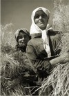 Margaret Bourke-White, Ukrainian women wheat harvesters on a collective farm nr. Kharkov (August 1941)