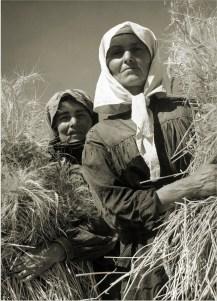 Margaret Bourke-White, Ukrainian women wheat harvesters on a collective farm nr. Kharkov (August 1941)