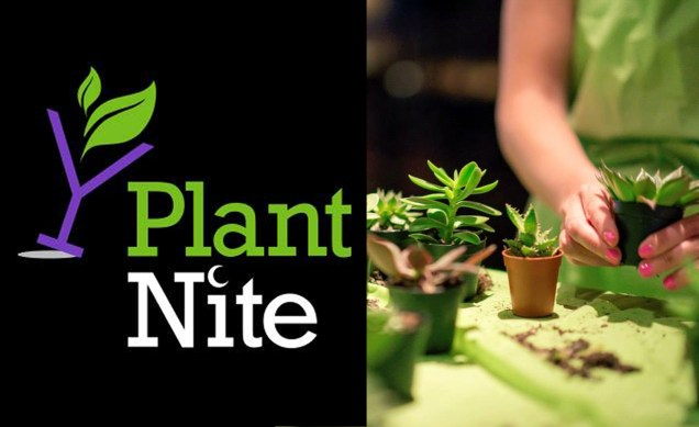 Image result for plant nite