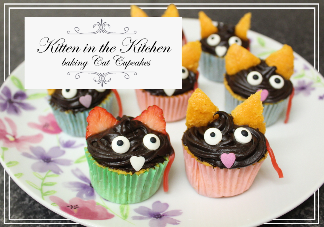 How To Bake Cat Cupcakes post thumbnail
