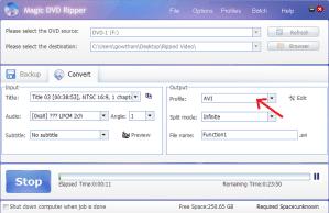 magic dvd ripper-select video format