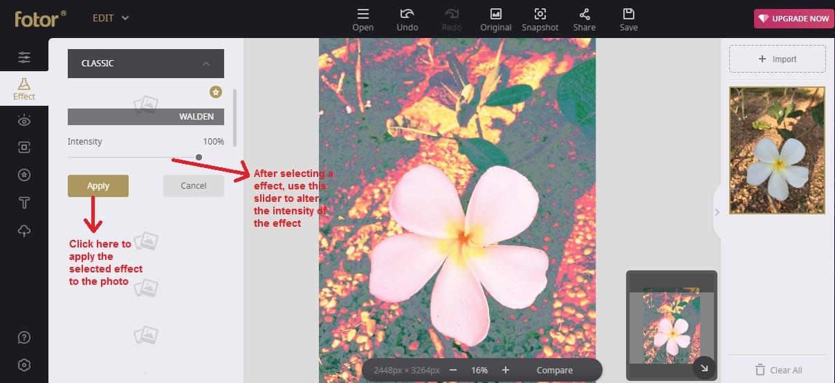 Fotor edit choose effect