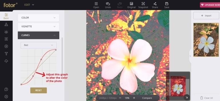 Fotor edit curve tool