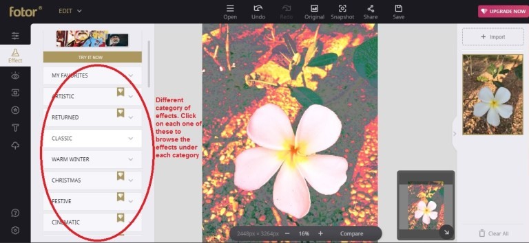 Fotor edit effect category