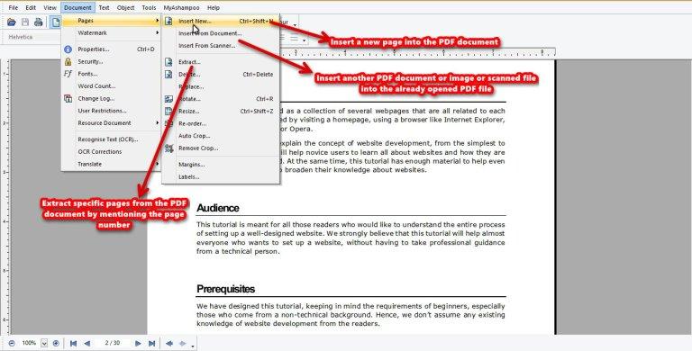 Ashampoo PDF Pro page insert