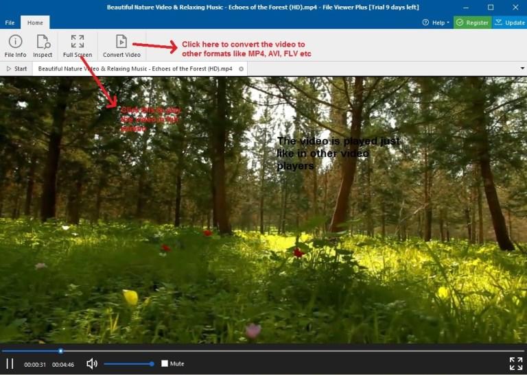 File Viewer Plus Video file