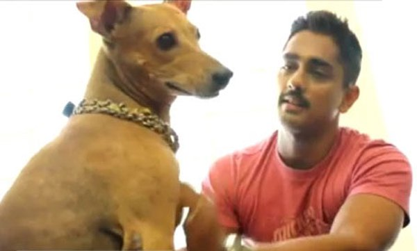 10 Enthralling Facts of The Actor Siddharth Check Out On His Birthday