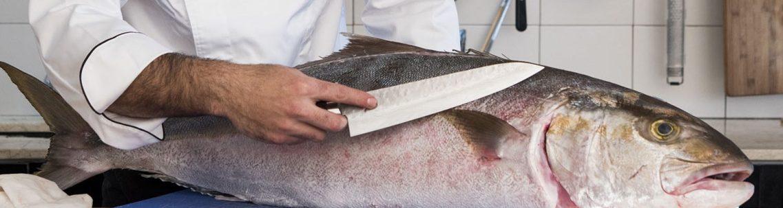 דרכים לדעת שהדג טרי