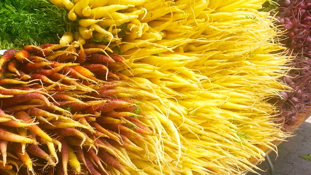 Carrots at Union Square Greenmarket