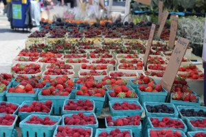 Berries from Caradonna Farms