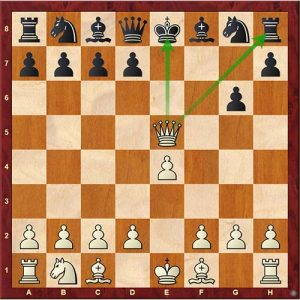 Chess Tactics fork