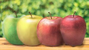 Gala, Fuji, or Red Delicious: What's your pick?