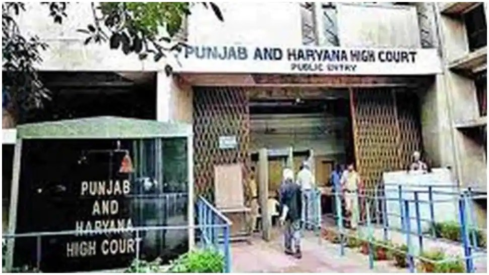 Punjab and Haryana HC upholds divorce of man citing mental cruelty by wife