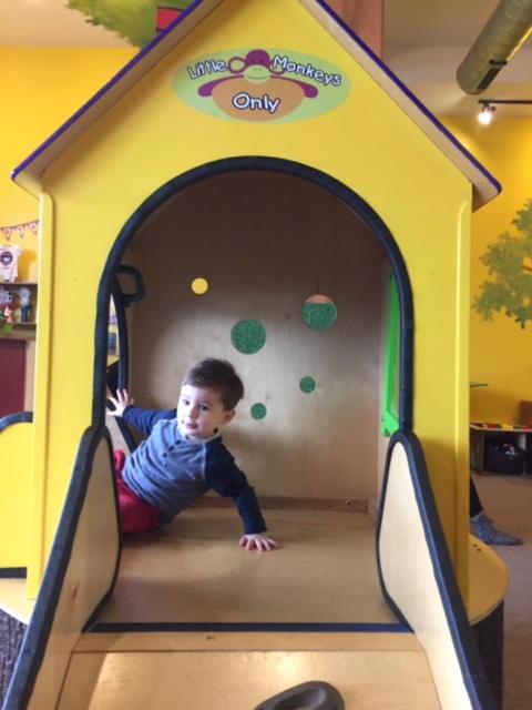 Purple Playroom