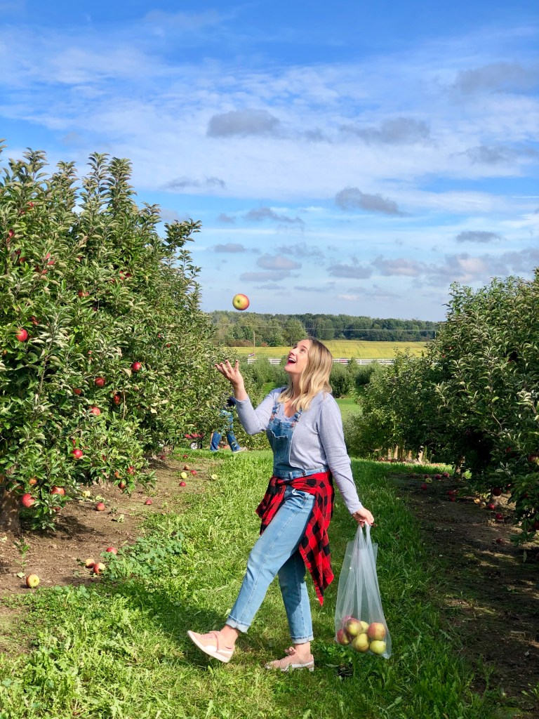 Crane's Apple Orchard has so much to do! Apple picking, hay rides, a restaurant, corn maze and more! Lots of fun!