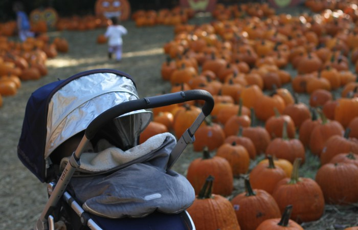 Where to Wednesday: A Cozy Fall Outing