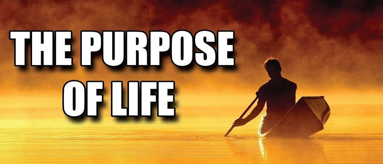 The_Purpose_of_Life_Transcript