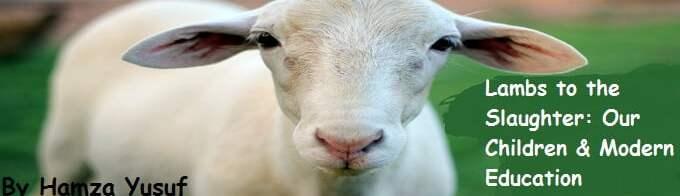 Lambs to the Slaughter - Our Children & Modern Education - Shaykh Hamza Yusuf.jpg