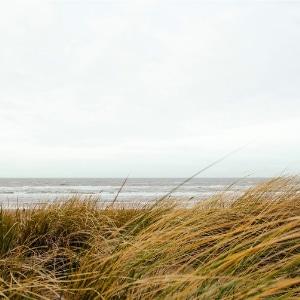 christian meditation blog