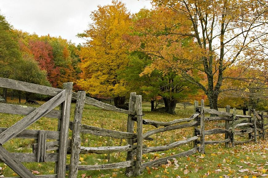 The Weathered Fence – A Poem