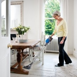 Best Vacuum For People With Pets And Kids