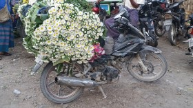flowers on a motor bike at the produce market