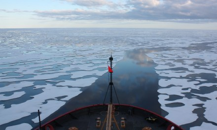 Opening a New Ocean – Arctic Ocean Fisheries regime as a (potential) turning point for Canada's Arctic policy