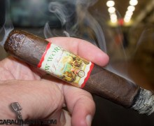 AJ Fernandez New World Robusto Cigar Review