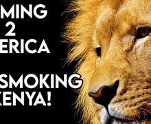 VODCast: Coming 2 America – Cigar Smoking In Kenya