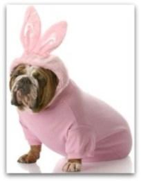 Cincinnati Easter Bunny