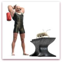 Muscle Man killing termites