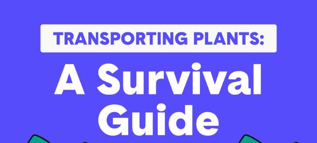 transporting plants