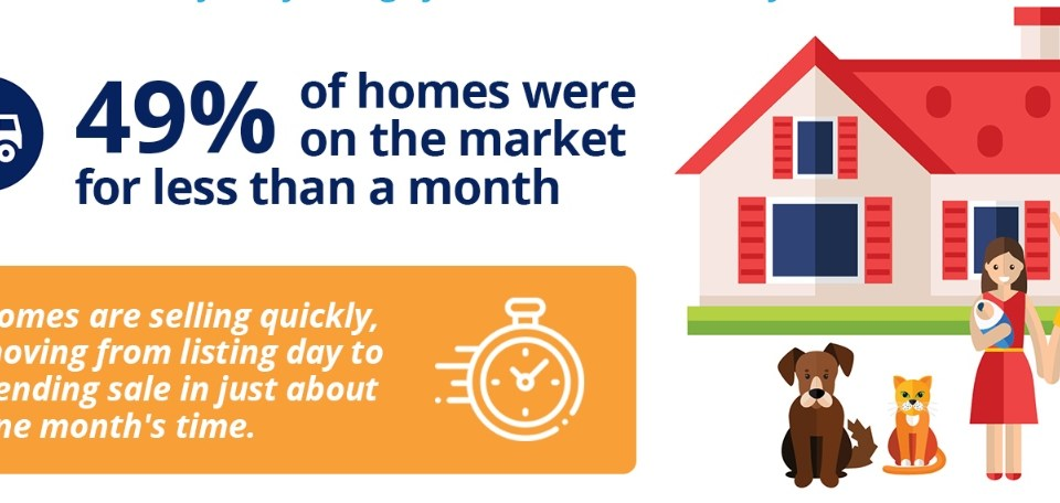 Photo of infographic on home sales