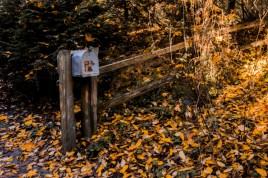 Tin Mailbox