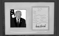 Revisiting Trump's Letter in the Wake of Midterm Elections