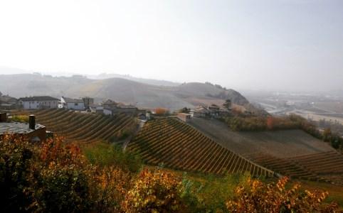 Op wijnreis door Barolo - Piemonte