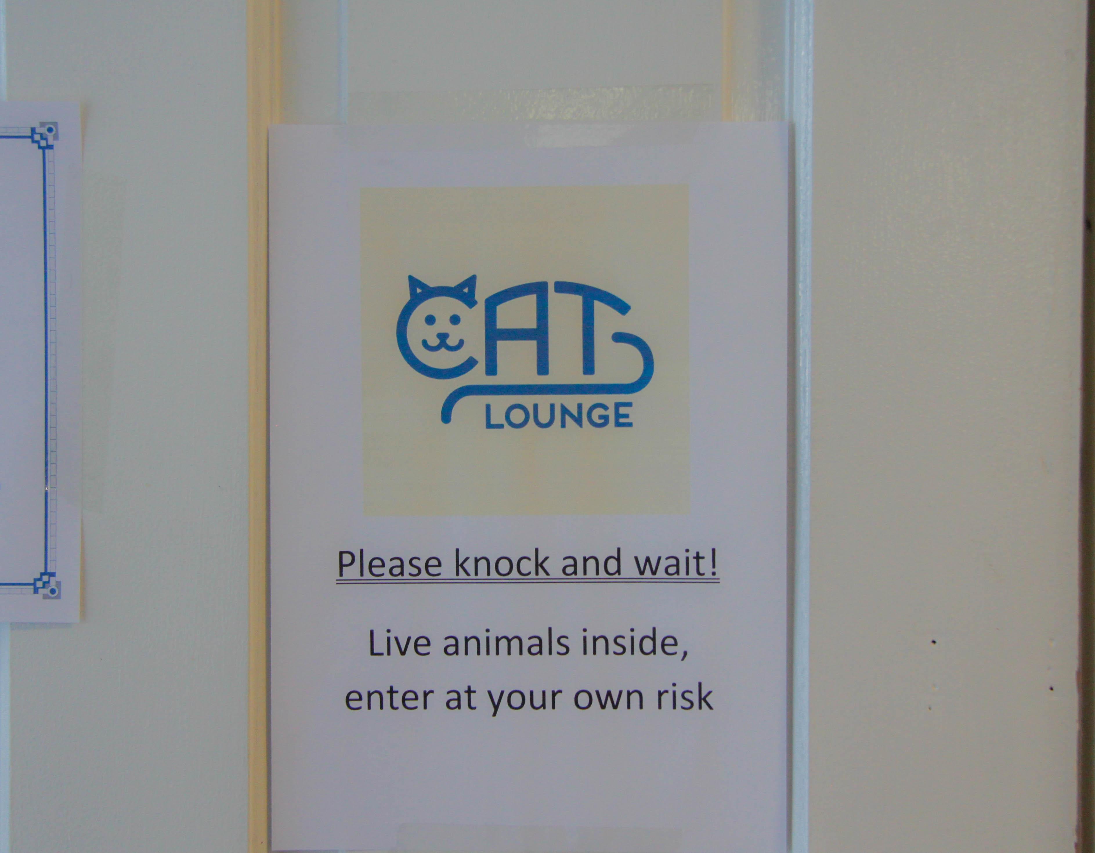 Cat lounge sign