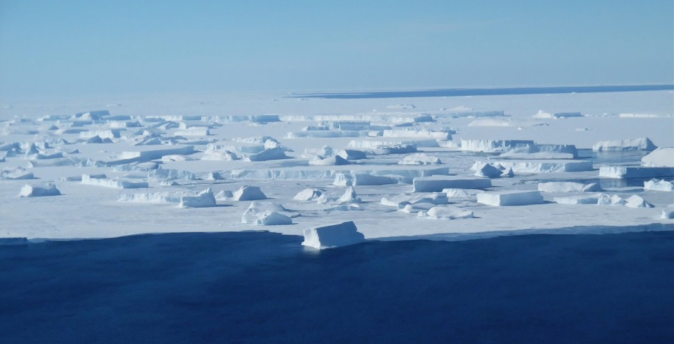 Icebergs float near Thurston Island, West Antarctica, 2014. (Photo courtesy NASA/GISS).