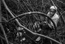 Piangua hunters patrol the swamps of the Colombian Pacific looking for the delicacy.