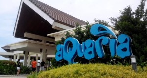 The Entrance at Aquaria Beach Resort