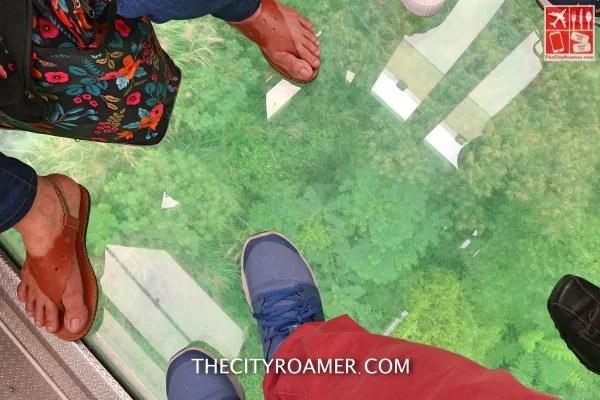 The glass floor of gondola